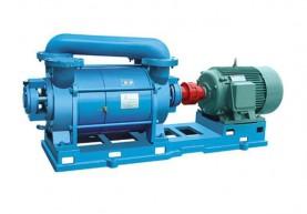 湖北2SK系列水环真空泵